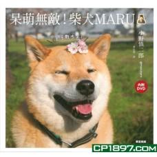 呆萌無敵!柴犬MARU  汪汪散步去